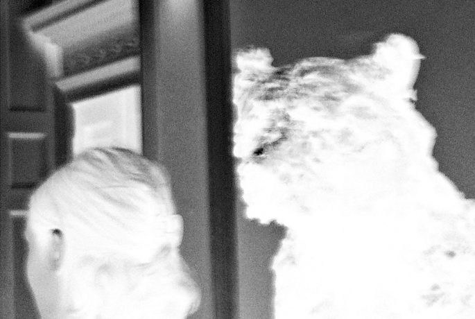 Éric Alliez: Rhizome (With no return) / Radical Philosophy